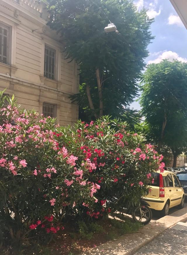 street Athens